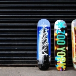 zoo york boards